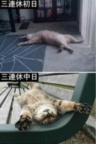 Baidu20IME_2013-7-25_20-43-47