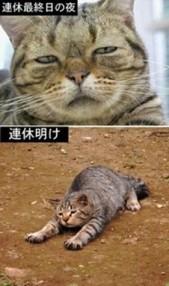 Baidu20IME_2013-7-25_20-44-28